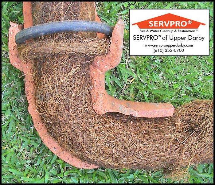 Don't Let Clogged Sewers Wreak Havoc on Your Home