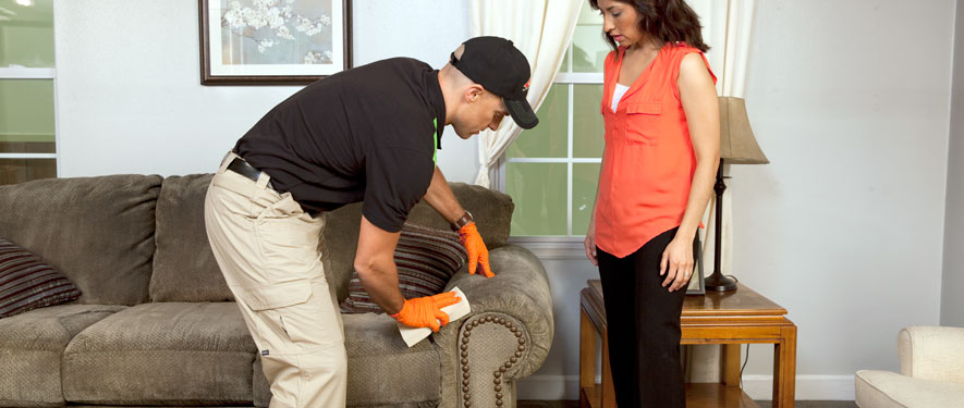 Upper Darby, PA carpet upholstery cleaning